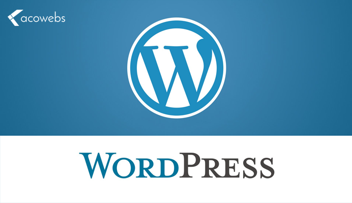 What is WordPress and Reasons for Choosing it