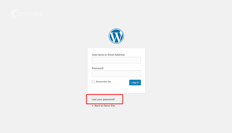 Forgot WordPress Login Password