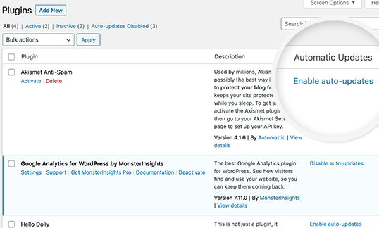 auto-update-management-system-for-wordpress-themes-and-plugins