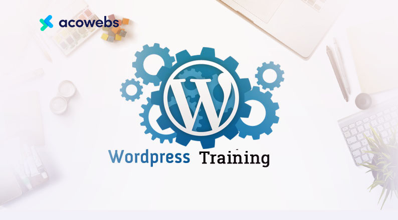 The Best WordPress Training Resources Revealed (Free & Paid)